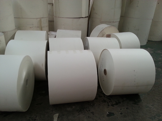 China Custom Paper Cup Raw Material Printed Paper Roll with Offset & Flexo Printing factory